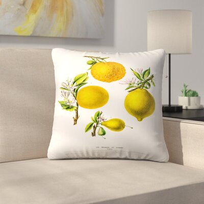 Flored Amerique Lesoranges Etcitrons Throw Pillow Size: 14 x 14