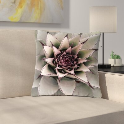 Suzanne Carter Succulent Outdoor Throw Pillow Size: 16 H x 16 W x 5 D