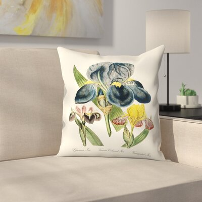Iris Throw Pillow Size: 14 x 14