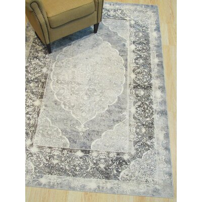 Phares Medallion Distressed Gray Area Rug Rug Size: Rectangle 44 x 63