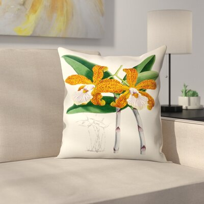 Fitch Orchid Cattleya Velutina Throw Pillow Size: 18 x 18