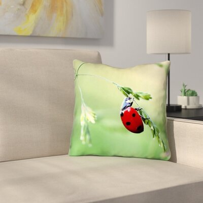 Duriel Outdoor Throw Pillow Size: 18 x 18