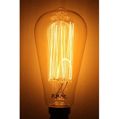 40W Orange E26 Incandescent Edison Standard Light Bulb