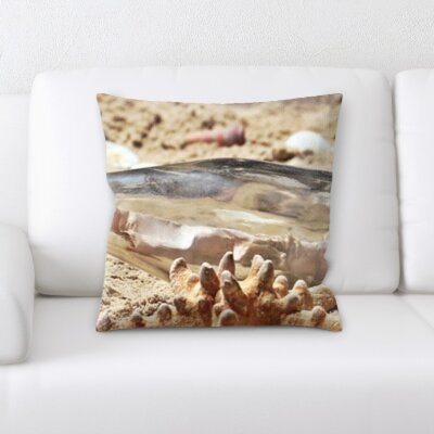 Horsley Sea Shells Throw Pillow
