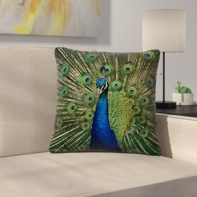 Angie Turner Proud Peacock Animals Outdoor Throw Pillow Size: 18 H x 18 W x 5 D