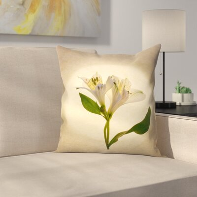 Maja Hrnjak Botany10 Throw Pillow Size: 20 x 20