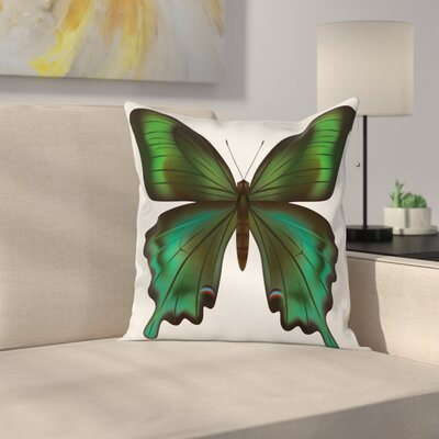 Swallowtail Exotic Creature Square Cushion Pillow Cover Size: 24 x 24