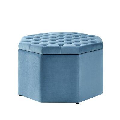 Protagoras Storage Ottoman Upholstery: Light Blue/Velvet, Size: Large