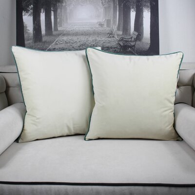Catanzaro Velvet Throw Pillow Color: Ivory
