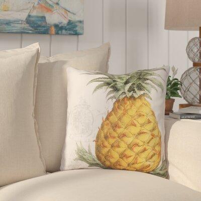 Langdon Pineapple Indoor/Outdoor Throw Pillow
