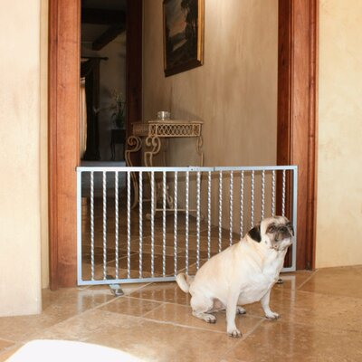 Step Over Freestanding Pet Gate Finish: Pewter