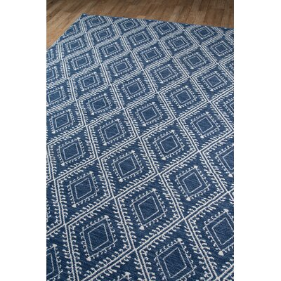 Easton Pleasant Hand-Woven Navy Indoor/Outdoor Area Rug Rug Size: Rectangle 5 x 76