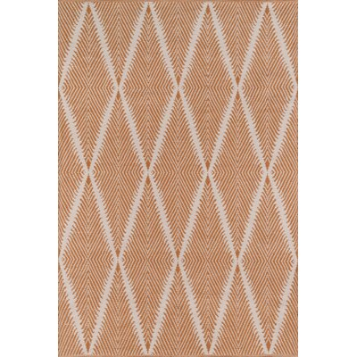 River Beacon Hand-Woven Orange Indoor/Outdoor Area Rug Rug Size: Rectangle 5 x 76