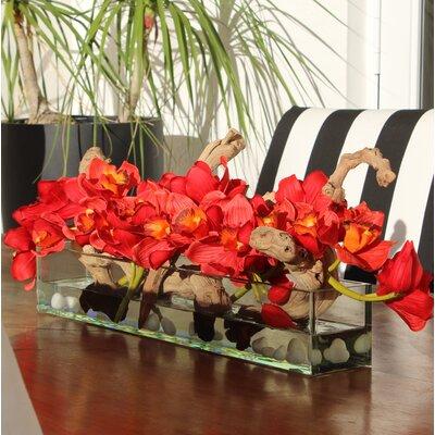 Driftwood Cymbidium Orchids Centerpiece in Glass Planter D2087793E30645319804687DA1D4DCF8