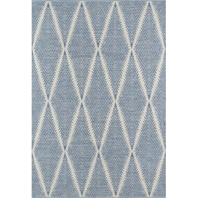 River Beacon Hand-Woven Denim Indoor/Outdoor Area Rug Rug Size: Rectangle 76 X 96