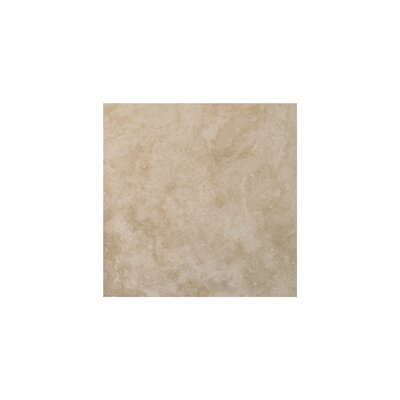 Light Filled 4 x 4 Travertine Field Tile in Honed
