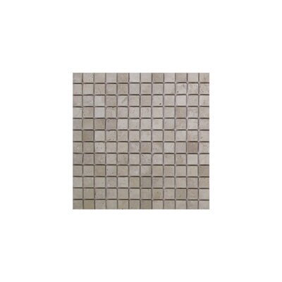 Light Tumbled 1 x 1 Travertine Mosaic Tile in Brown/Gray