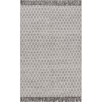 Chery Hand-Woven Gray Area Rug Rug Size: Rectangle 4 x 6