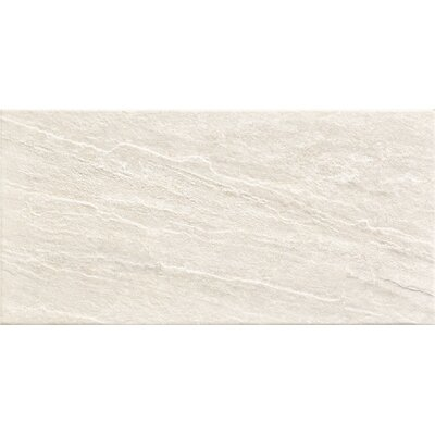 Cosmos 12 x 24 Porcelain Field Tile in Calcre