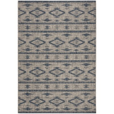 Mathes Gray/Navy Indoor/Outdoor Area Rug Rug Size: Rectangle 4 x 57