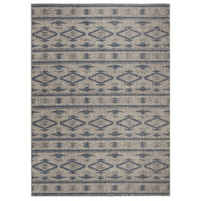 Mathes Gray/Navy Indoor/Outdoor Area Rug Rug Size: Rectangle 9 x 12