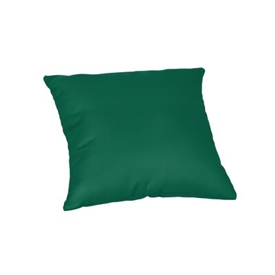 Feagin Sunbrella Solid Outdoor Throw Pillow Color: Canvas Forest Green, Size: 18 x 18