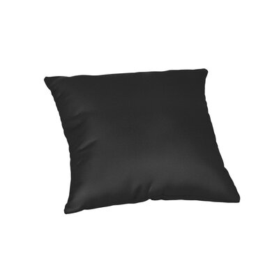 Feagin Sunbrella Solid Outdoor Throw Pillow Color: Canvas Black, Size: 20 x 20