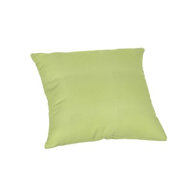 Feagin Sunbrella Solid Outdoor Throw Pillow Color: Canvas Parrot, Size: 18 x 18