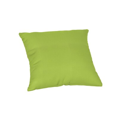 Feagin Sunbrella Solid Outdoor Throw Pillow Color: Canvas Macaw, Size: 20 x 20