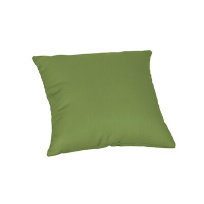 Feagin Sunbrella Solid Outdoor Throw Pillow Color: Spectrum Cilantro, Size: 20 x 20