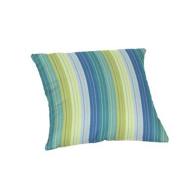 Deese Outdoor Throw Pillow Size: 20 x 20
