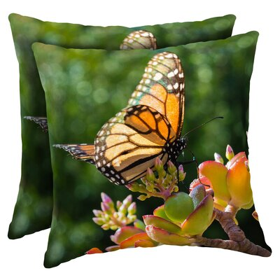 Macri Monarch Butterfly Outdoor Throw Pillow