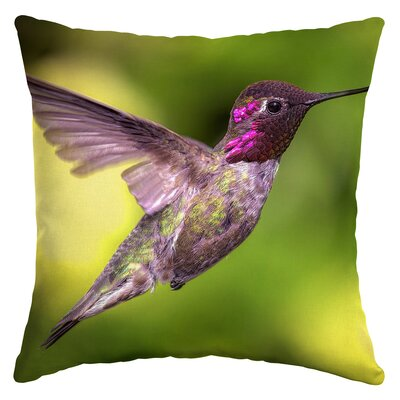 Macrae Hummingbird Flight Outdoor Throw Pillow