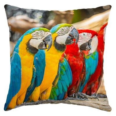Kistner Parrot Trio Outdoor Throw Pillow