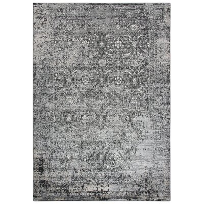 Haigh Power-Loom Brown Area Rug Rug Size: Runner 52 x 73
