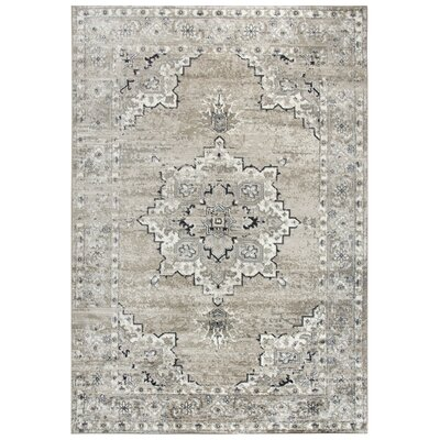 Haigh Brown Area Rug Rug Size: Runner 52 x 73