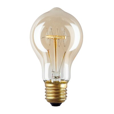 40W Amber E26 Incandescent Edison Standard Light Bulb