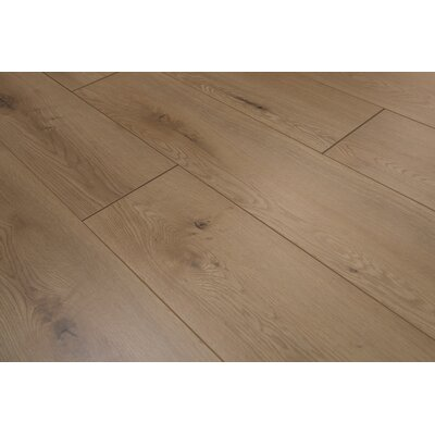 Torre 9 x 48 x 8mm Oak Laminate Flooring in Buckwheat