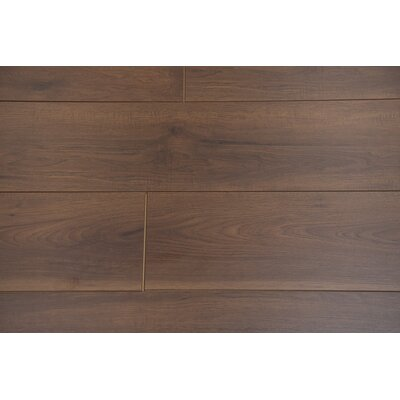 Torre 9 x 48 x 8mm Hickory Laminate Flooring in Caraway