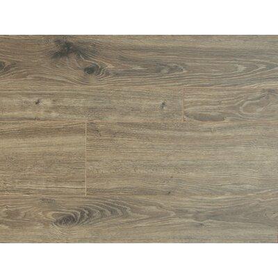 Lucerne 7 x 48 x 12mm Oak Laminate Flooring in Fog