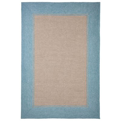 Enoch Border Hand-Woven Brown/Turquoise Indoor/Outdoor Area Rug Rug Size: Rectangle 36 x 56