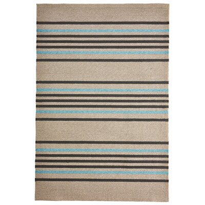 Enoch Stripe Hand-Woven Brown/Turquoise Indoor/Outdoor Area Rug Rug Size: Rectangle 76 x 96