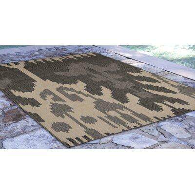 Finklea Ikat Gray/Ivory Indoor/Outdoor Area Rug Rug Size: Rectangle 410 x 76