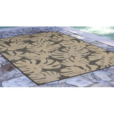 Stillwater Fronds Gray/Beige Indoor/Outdoor Area Rug Rug Size: Rectangle 410 x 76