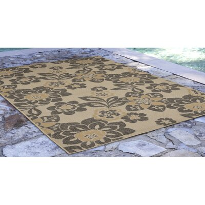 Stillwater Garden Gray/Beige Indoor/Outdoor Area Rug Rug Size: Rectangle 710 x 910