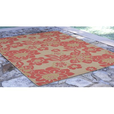 Fawkes Garden Sunset Rust Indoor/Outdoor Area Rug Rug Size: Rectangle 33 x 411