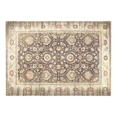 Irons Cotton Beige Area Rug