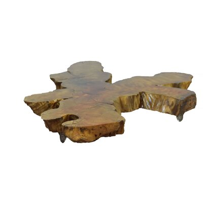 Ramer Root Coffee Table