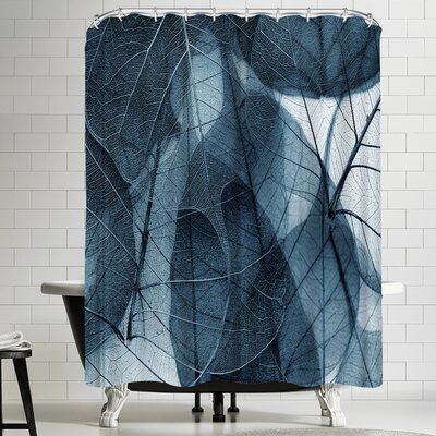 Delicate Shower Curtain Color: Blue/Gray