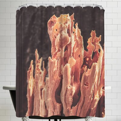 Annie Bailey Fire Wood Shower Curtain